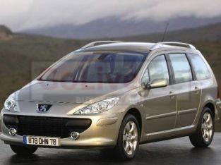 Peugeot Partner Delivery van with driver