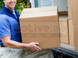 The self Storage ( Movers n Removals