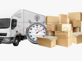 Ghelman Movers Cargo LLc