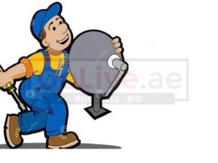 Satellite Dish Installation Services
