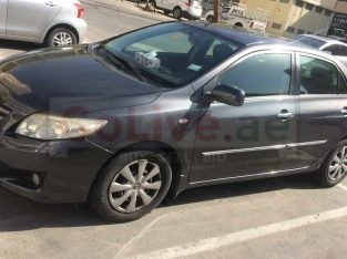 2009 Toyota corolla without accident and agency maintained Car on sale