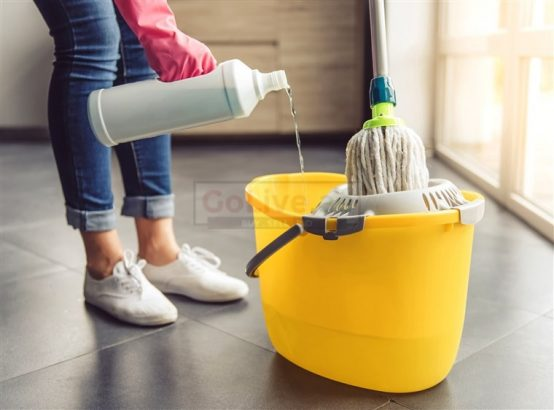 CLEANING WORK