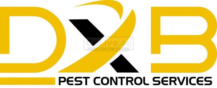 DXB Pest Control Service