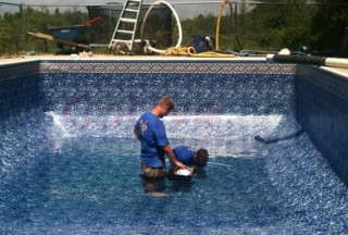 We can work for garden maintainance and pool maintianance