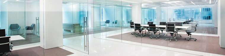 Carpenter gypsum glass partitions doors