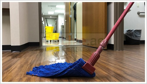 Philippine maids available for part time cleaning
