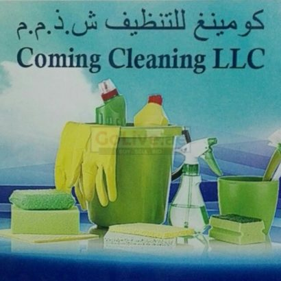 maid Services for as low as 25/hour