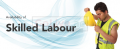 Skilled Labour available for supply