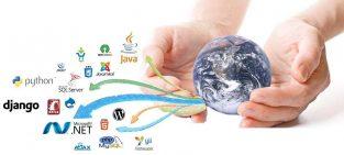 Website and software designing