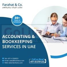 Need Accounting and Bookkeeping services