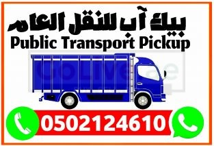 Pick-up 3 ton Taxi