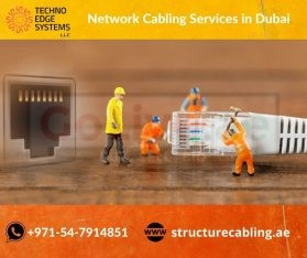 Professional Network Cabling Services in Dubai