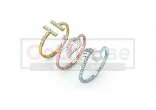 Set of 3 Adjustable Rings