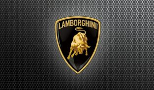 Lamborghini used parts Tr ( sharjah Parts Market )