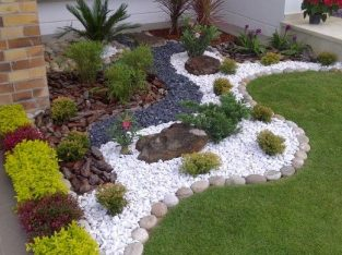 GARDEN PLANTS AND LANDSCAPING