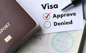 Freelance visa 2 year 3 year