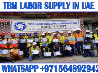 Daily Basic Ordinary labor supply in Ajman