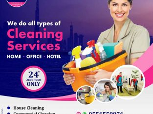 Housemaids Cleaners Available