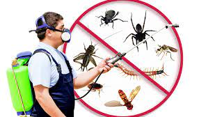 QUICK PEST REMOVAL