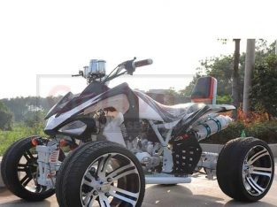 110CC/125CC Quad ATV For Adult With CE Approved