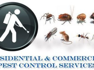 ISO CERTIFIED PEST CONTROL AND DISINFECTION COMPANY