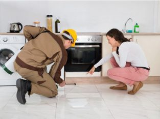 RESIDENTIAL & COMMERCIAL PEST REMOVAL SERVICE