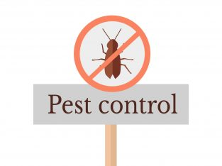 LOW COST PEST CONTROL SERVICES