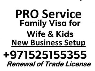 We Provide Family Residence Visa Services, 0525155355