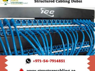 Choose Techno Edge Systems for Structured Cabling in Dubai