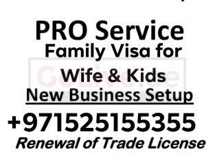 Family Visa Services, Freelance visa services