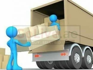 Best Movers and Packers ln Al Sila
