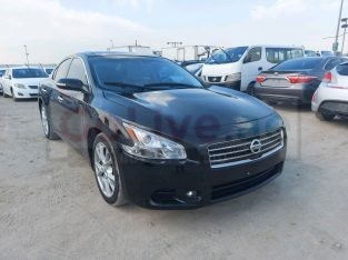 Nissan Maxima 2012 for sale