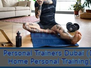 Personal Trainers (In Home Personal Training)
